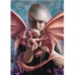 Dragonkin Card