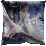 Midnight Messenger Cushion