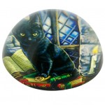 Cat and Books Paperweight NOW7220