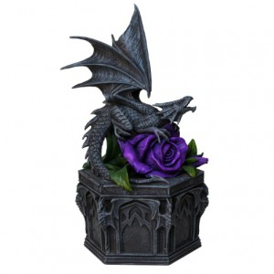 Dragon Beauty Box