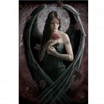 3D1 Angel Rose