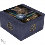 Fortune Teller Mirror Box