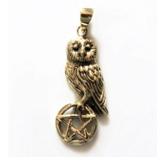 Bronze Owl on Pentagram Pendant