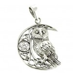 LP silver Owl on Moon