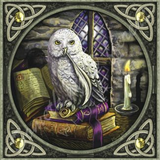 Owl with Quill Card