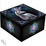 Enlightenment Mirror Box