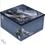 Midnight Messenger Mirror Box