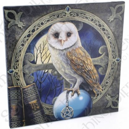 Spell Keeper Canvas Wall Plaque shows an owl perched on a crystal ball whilst holding a pentacle in its talons