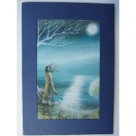 The Wish Card by Amanda Clark