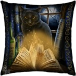 Bewitched Cushion shows a magical black cat