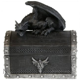 Precious Hoard Dragon Box