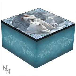 Winter Guardians Mirror Box