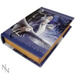 Midnight Messenger Book Box shows a white witch with 2 of her owls in a wintery magic forest