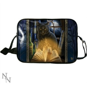 Bewitched Side Bag has a black cat and spell books