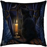The Midnight Vigil cushion shows a black cat looking out of a window illuminated by a candle