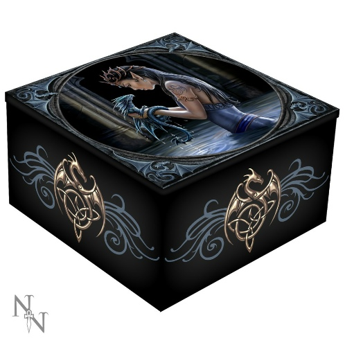 Water Dragon Mirror Box shows an elven madi waist deep in water holding a young dragon
