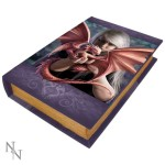 Dragonkin Book Box shows a fair-haired girl holding her baby dragon