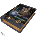 Fortune Teller Book Box shows a cat and a crystal ball