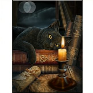 Witching Hour 3D Picture shows a black cat, he is mesmerised by a flickering candle