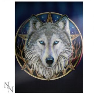 Wild One 3D Picture shows a wolf in front of a pentagram