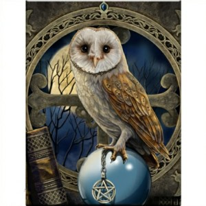 Spell Keeper 3D Picture shows an owl with a pentacle in its talons sitting on a crystal ball