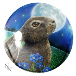 Moon Gazing Hare Paperweight shows a hare sitting in a field of blue flowers whilst gazing at the full moon