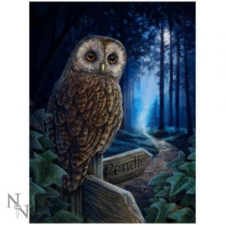 Way of the Witch 3D Picture shows an owl perched on a signpost pointing the way to Pendle
