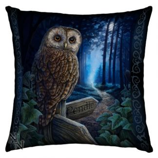 Way of the Witch Cushion