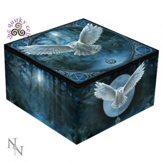 Awaken Your Magic Mirror Box