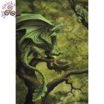 Forest Dragon Card