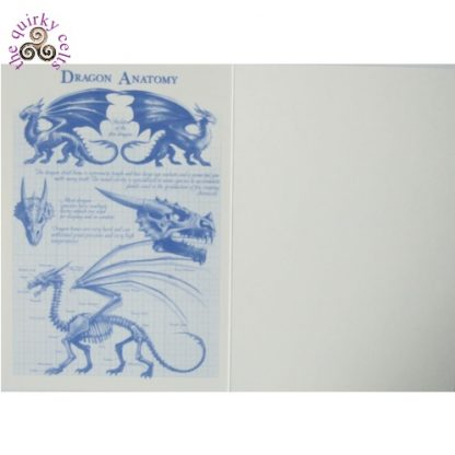 Inside of the Dragon Size Comparison Chart Card