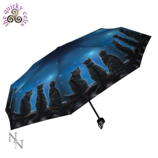 Wish Upon a Star Umbrella
