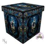 Skull Fairy Storage Box