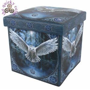 Awaken Your Magic Storage Box