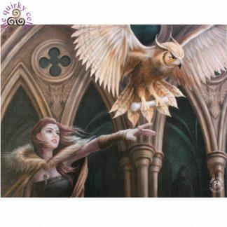 Owl Messenger Canvas Picture