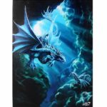 Water Dragon Canvas Picture
