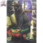 Cat and Books Fridge Magnet