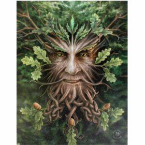 Oak King Canvas Print