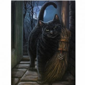 A Brush With Magick Canvas Picture