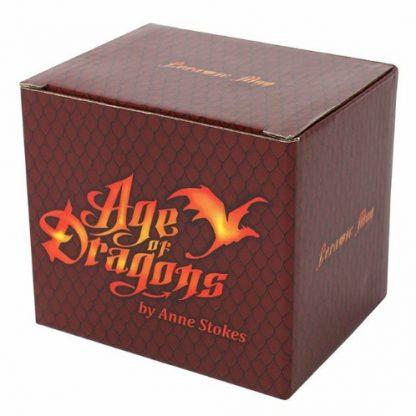Age of Dragons Mug Box