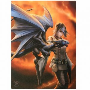 Dragon Trainer Canvas Picture