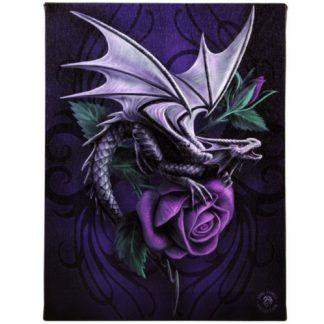 Dragon Beauty Canvas Picture