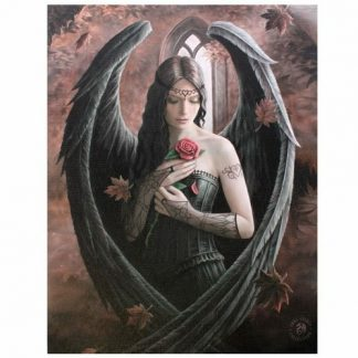Angel Rose Canvas Picture