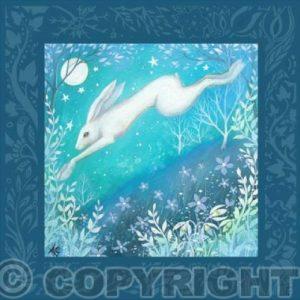 Luna Card