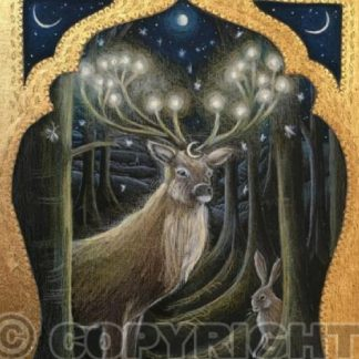 The Light of the Forest Card