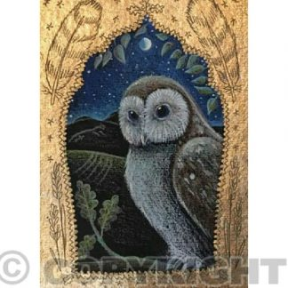 The Owl in the Oak Card