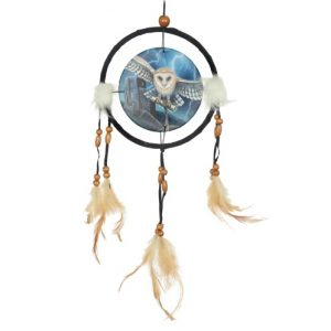 Heart of the Storm Dreamcatcher