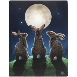 Moon Shadows Canvas Picture