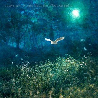 Midsummer Moonlight Card