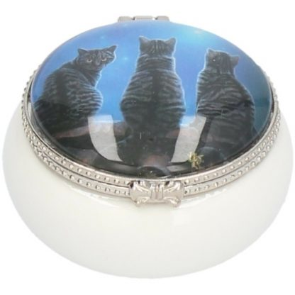 Wish Upon A Star Trinket Box